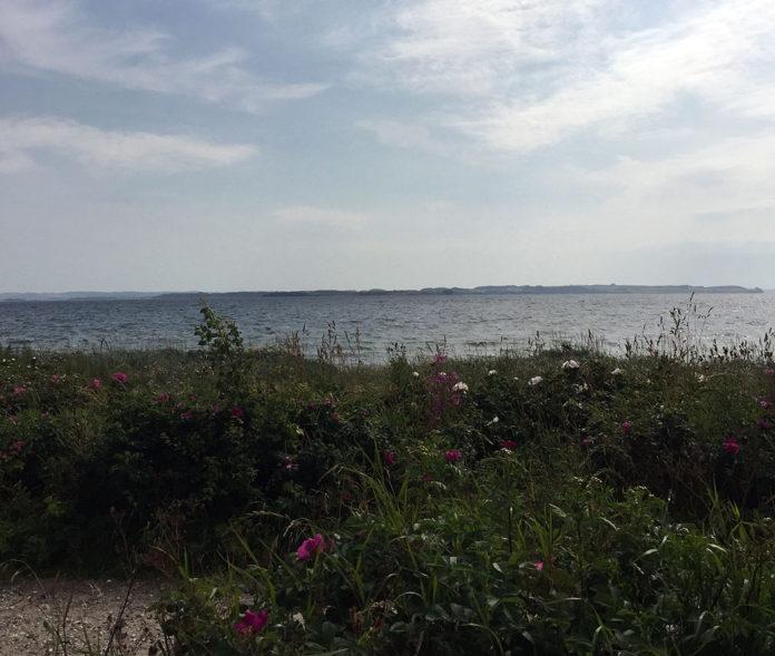 Åkrogen strand i Risskov