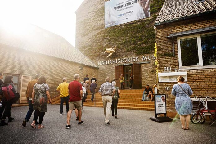 Efterårsferie naturhistorisk museum